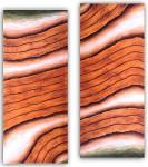 [Code:S170] [Medium:Oil-on-Canvas] [Size:1220x520mmx2] [Artist:Shaheen-Soni] [Price:R4800]